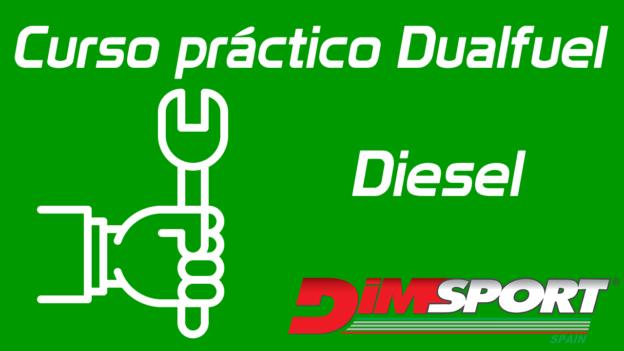 Curso Práctico Dualfuel